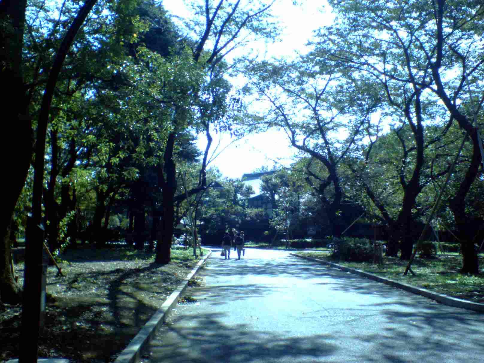上野公園のどこか