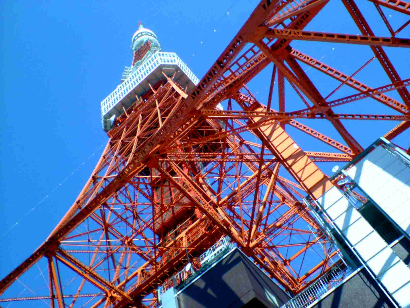 東京タワー 下から見上げた